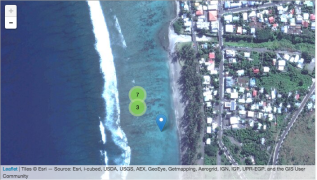Detail shot of one sampling location from Isle de la Reunion
